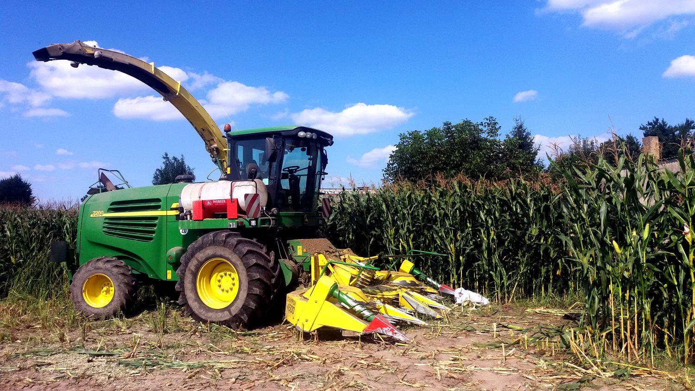 Tylko na zewnątrz 52-latek wpadł w kemper bo rwał kolby podczas koszenia kukurydzy SJ16